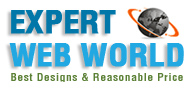 Expert web world Logo