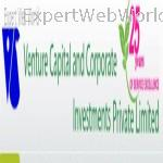 Venture Capital And Corporate Investments Private Limited